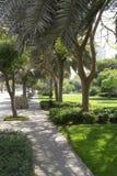 道路在公园以绿色 免版税库存照片