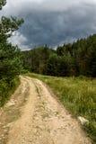 绕道路在反对剧烈的天空的森林里 库存图片