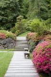 道路在日本庭院里 库存图片