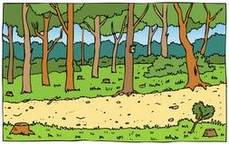 道路在森林公园 免版税图库摄影