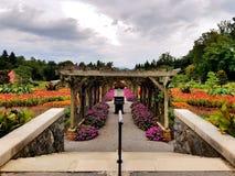 道路在神的庭院里 免版税库存照片