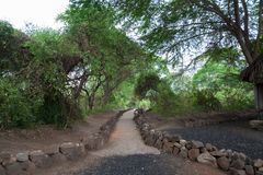 道路在Mzima春天 免版税图库摄影