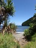 道路打开在Honomanu公园染黑沙子海滩 免版税图库摄影