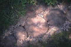 道路由树桩做成在庭院里 免版税库存照片