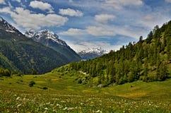 从道路的瑞士阿尔卑斯看法向猜错查家 免版税库存图片