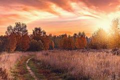 道路的秋天视图由草甸的 免版税库存图片