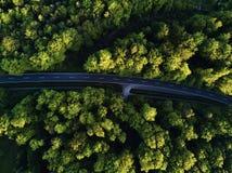 道路的顶视图穿过树 从气球的看法 从采取上的路视图由quadrocopter 免版税库存照片