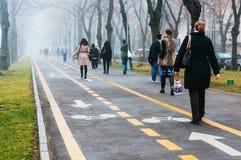道路的,清早,布加勒斯特,罗马尼亚工作者 免版税库存图片