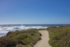 道路看法沿17英里驱动加利福尼亚海岸的  免版税库存照片