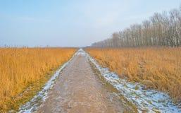 道路穿过一个冻结的领域在冬天 库存图片