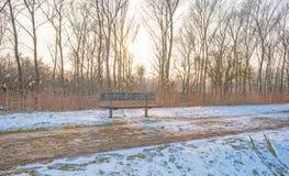 道路穿过一个冻结的领域在冬天 免版税库存图片