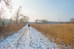 道路穿过一个冻结的领域在冬天 库存照片