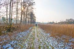 道路穿过一个冻结的领域在冬天 免版税图库摄影