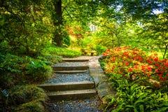 道路穿过全国树木园的一个五颜六色的庭院洗涤的 库存图片