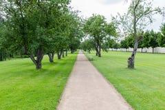 道路穿过公园在春天 免版税库存照片