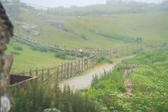 道路穿过农场在康沃尔郡 免版税库存照片