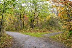 道路穿过分裂在两个方向的秋天森林 免版税库存照片