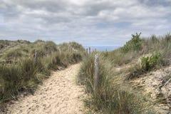 道路穿过在海滩的沙丘 免版税库存图片