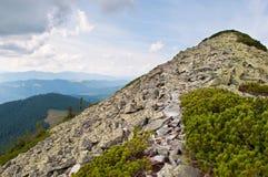 道路穿过对山峰的石领域 免版税图库摄影