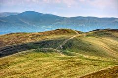 道路穿过小山边草甸在喀尔巴汗 免版税库存图片