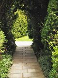 道路穿过有绿色叶子和阳光的一个遮荫庭院 免版税库存图片