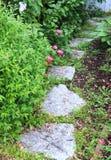 道路穿过有郁金香的庭院 库存照片