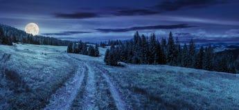 道路穿过森林的草甸山的在晚上 图库摄影