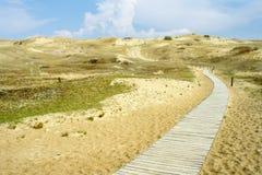 道路穿过沙丘 免版税库存图片