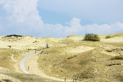 道路穿过沙丘 免版税库存照片