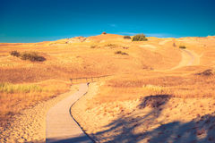 道路穿过沙子 免版税图库摄影
