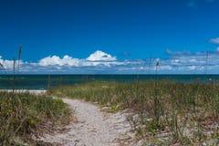 道路穿过自然海滩草向海洋 库存图片