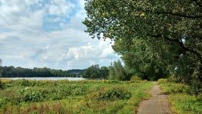 道路穿过自然 免版税库存图片