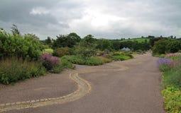 道路穿过被修剪的庭院 免版税库存图片