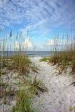 道路穿过镇定蓝色海洋的沙丘 免版税图库摄影