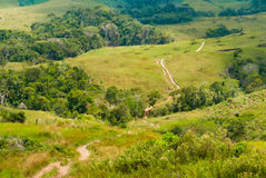 道路穿过Gran Sabana,委内瑞拉 库存图片