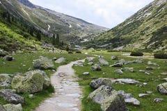 道路穿过Tyroler Ziller谷,奥地利 免版税图库摄影