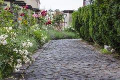 道路铺与一个鹅卵石在有花的庭院里 免版税库存照片