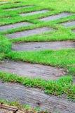 道路绿草 库存图片