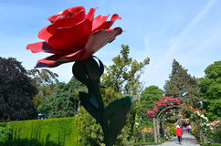 遗产玫瑰园在克赖斯特切奇植物园里,新的Ze 免版税库存照片