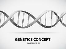 遗传学 皇族释放例证