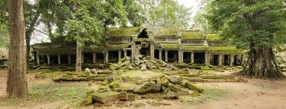 遗弃北部入口, Ta Prohm寺庙,吴哥窟,柬埔寨 免版税库存图片
