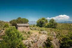 遗弃石农舍在可西嘉岛的Balagne地区 库存照片