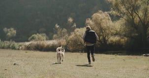 遛与他多壳的狗的人自然,除湖以外 股票视频