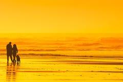 遛的夫妇在海滩的狗 图库摄影