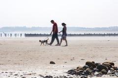 遛的夫妇在海滩的狗 免版税库存照片