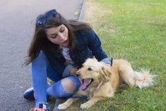 遛的女孩一条狗在夏日 库存图片