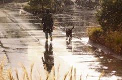 遛的妇女在多雨天气的狗 免版税库存图片