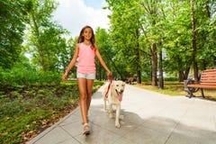 遛美丽的十几岁的女孩她的狗 库存照片