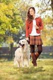 遛美丽的女孩她的狗在公园 免版税库存照片