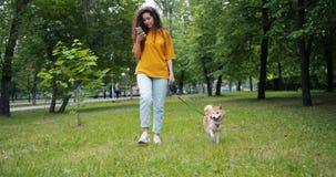 遛美丽的shiba inu狗的俏丽的女孩在公园使用智能手机户外 股票录像